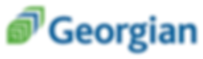 Georgian_BecomeaPSW_Official_partner.png