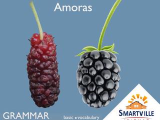"""Qual a diferença entre """"mulberry"""" e """"blackberry""""?"""