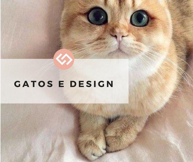 Gatos e Design