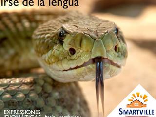 """Como dizer """"dar com a língua nos dentes"""" em espanhol?"""