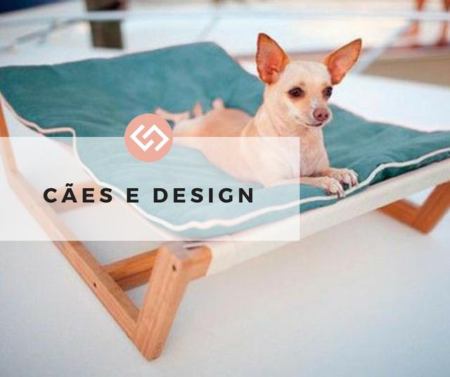 Cães e Design