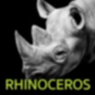 rhino-block.jpg