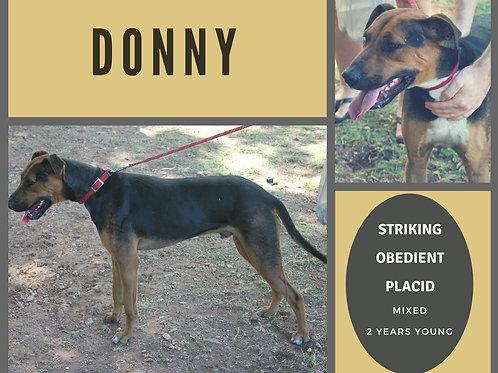 Donny (Donut)