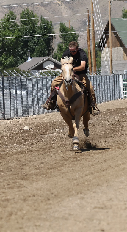 Horse Race_JPG.webp