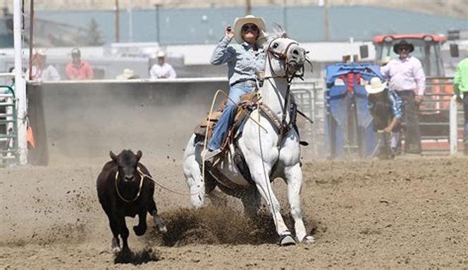 Super Horse Breakaway.jpg