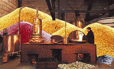 Distillerie de paillettes.jpg