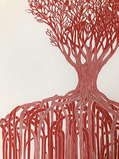 Mangrove in Red - Ros.jpg