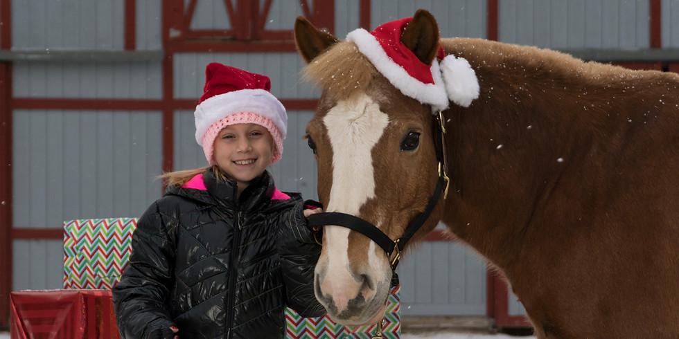 Crimson Stables Winter Horse Show