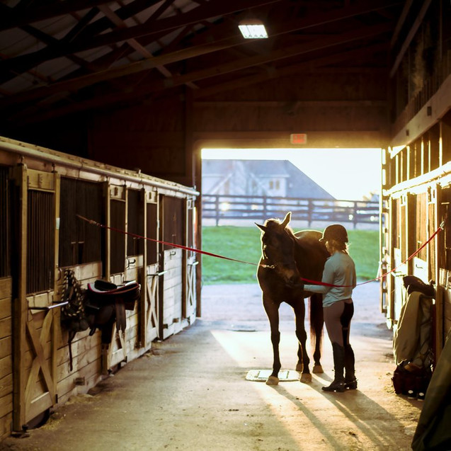 Horse and Rider in Barn Aisle.jpg