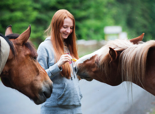 3 Ways Horses Can Improve Your Quality of Life