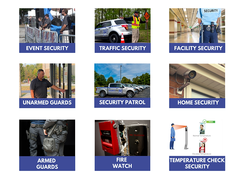 New graphic_services_security pro.png