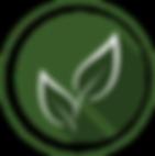 WELLNESS-TEA-ROOM-HELATHGARDEN-WELLNESS-