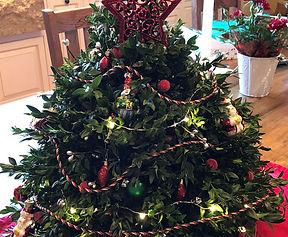 rye garden club boxwood tree sale
