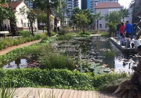 gold-fish-and-lily-pond-sarona-tel-aviv2