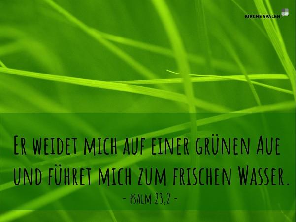 Psalm 23,2.jpg