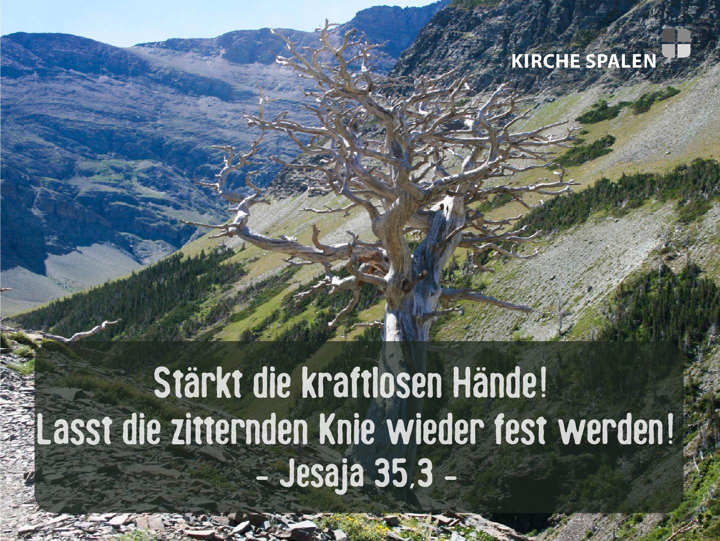 Jesaja 35,3.jpg