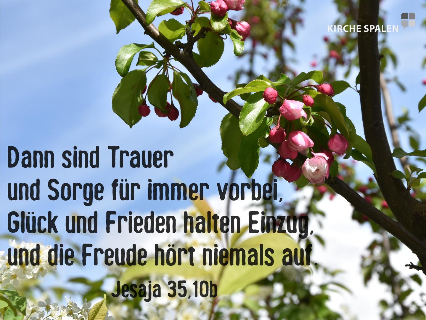 Jesaja 35,10b.jpg