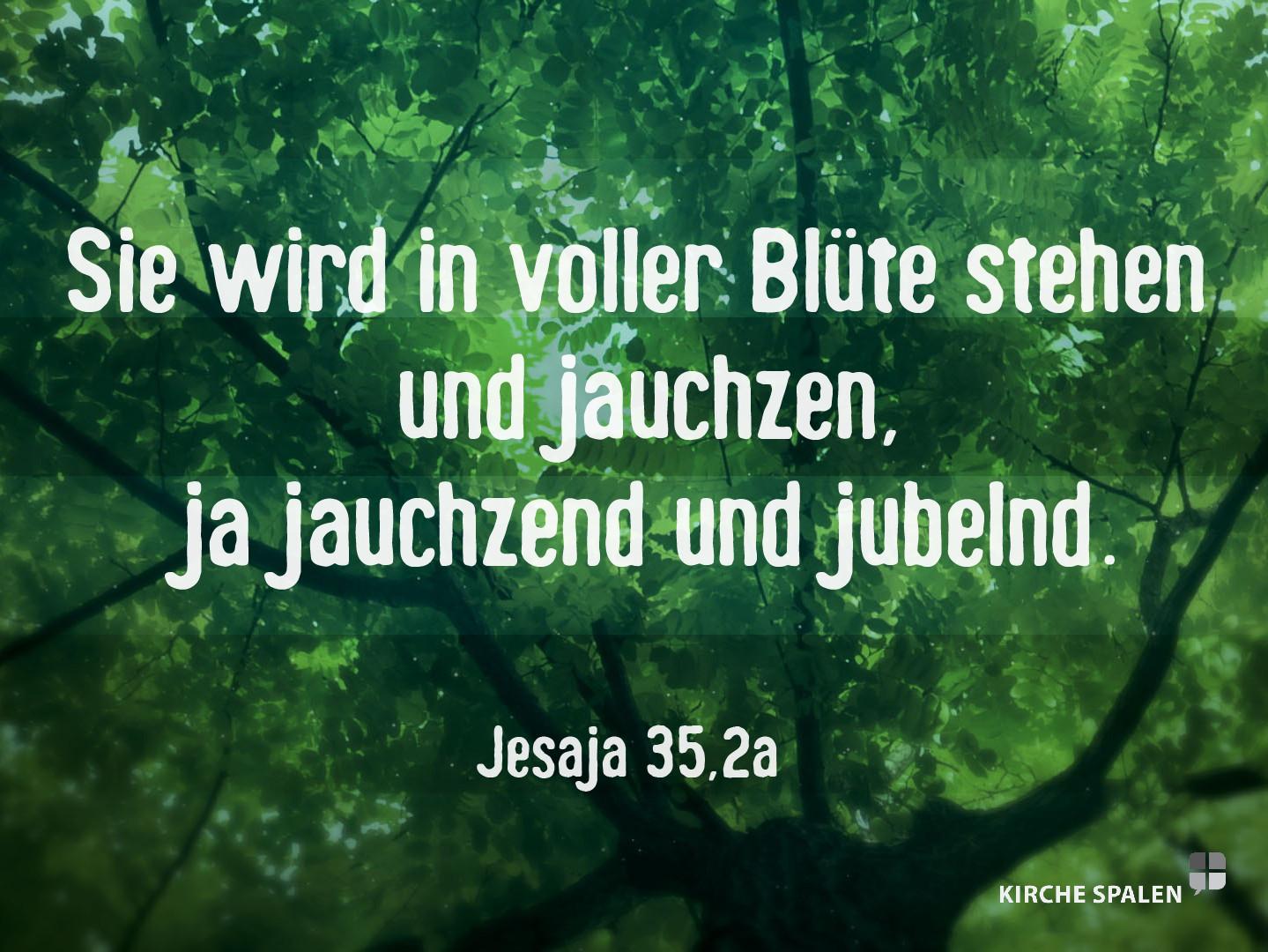 Jesaja35,2a.jpg