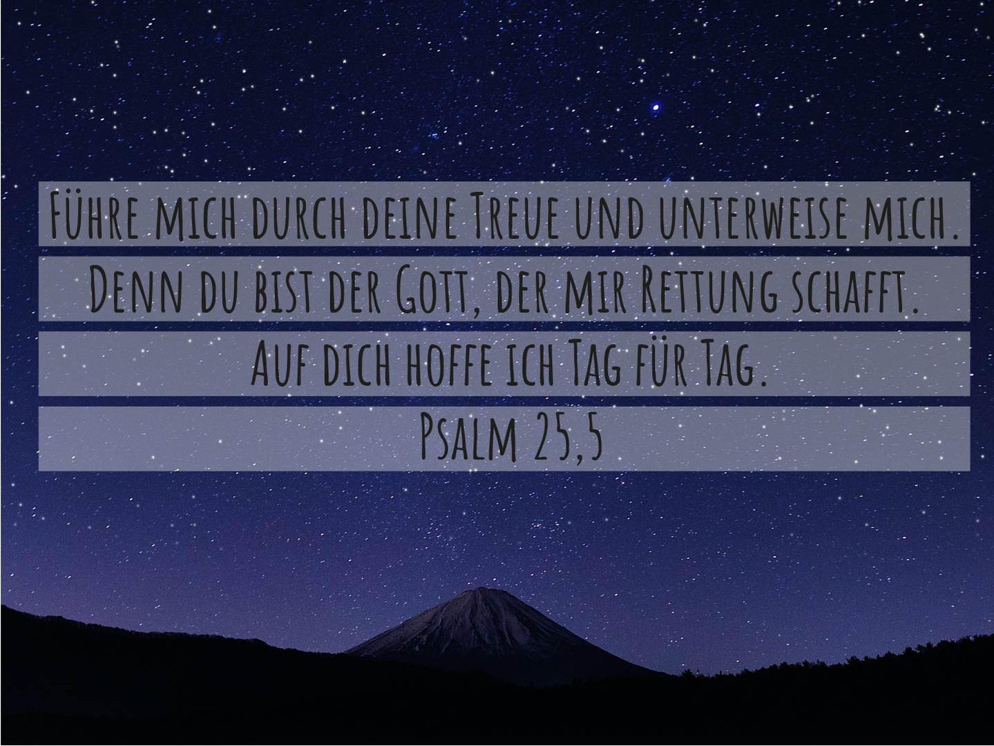 Psalm 25,5.jpg