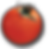 tomate_neu.png