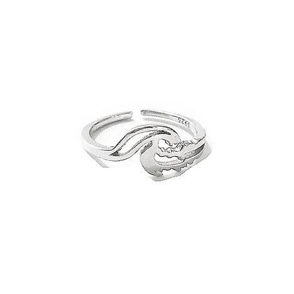 טבעת גל כפולה