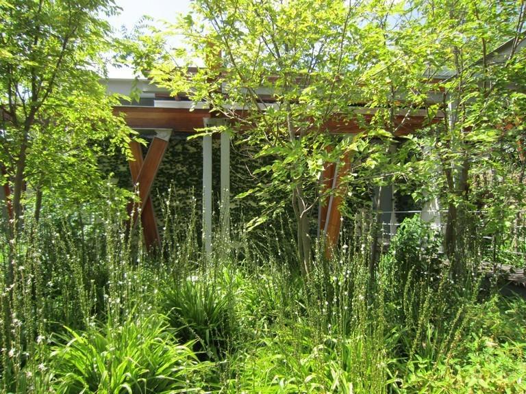 Highveldt House - Stinkwood Forest