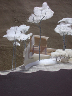 FOREST HOUSE model