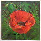 Breakell 7. Poppy study.   6 x 6   oil o