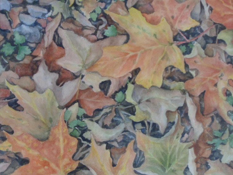 Scarano, #9, Scattered Leaves, Watercolo