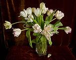 3.Tulips 3455.jpg