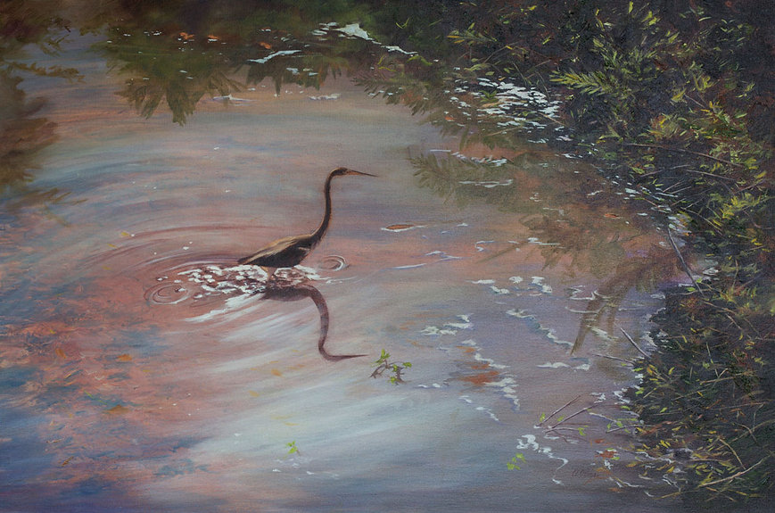 Alessi 10_Tricolored Heron, oil on museu