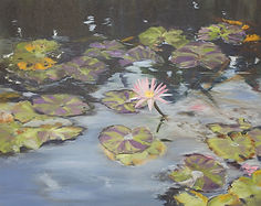 Alessi 1_Lily Pads, oil on canvas, 16 x