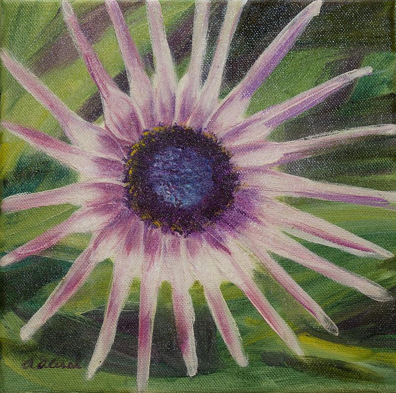 Alessi 4_Starburst Flower, oil on canvas
