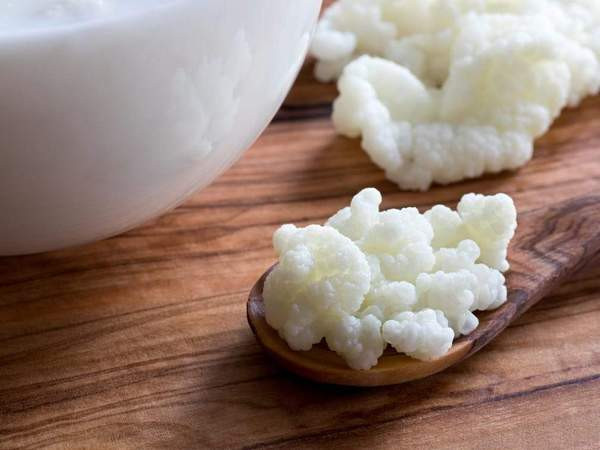 Kefir - What Will It Do For My Gut & How Can I Make My Own?