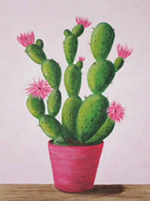 Cactus In Bloom Canvas