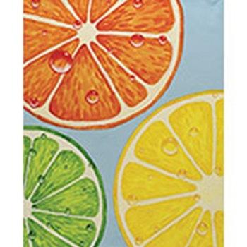 Slices of Citrus Canvas