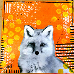 fox.collage.jpg