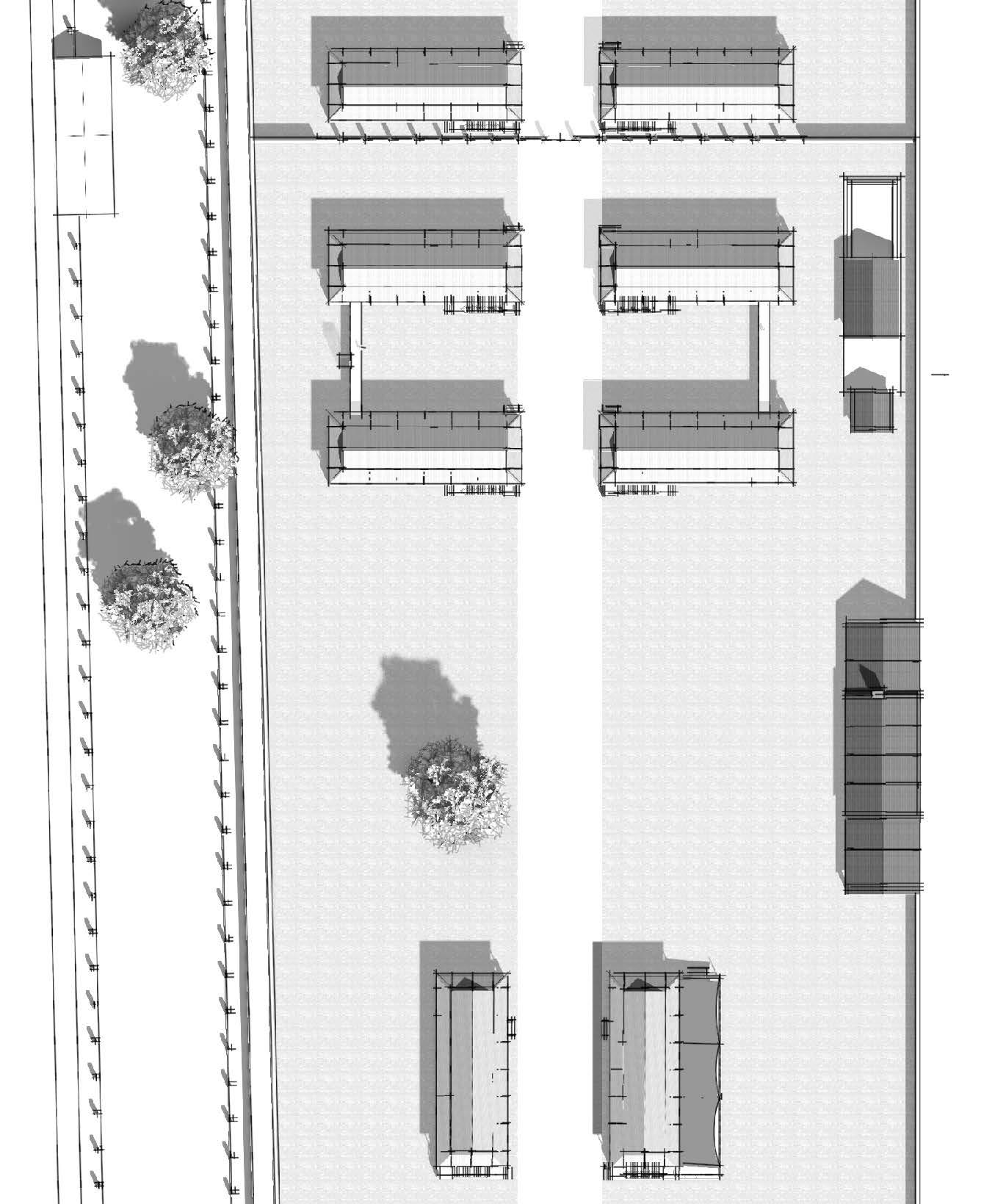 scanario 2 plan.jpg