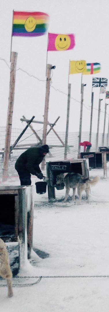 Green Dog Yard, Svalbard
