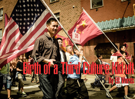 Birth of a Third Culture Kid-ult