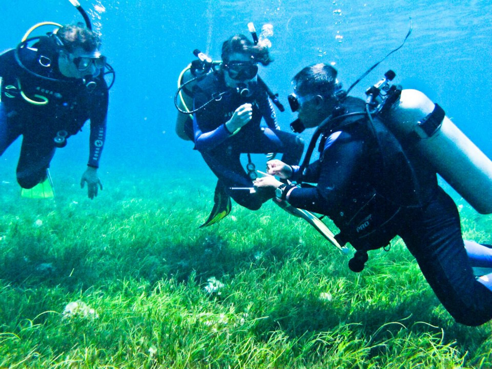 Dive Certification in the Philippines