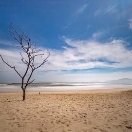 Lone, Thailand