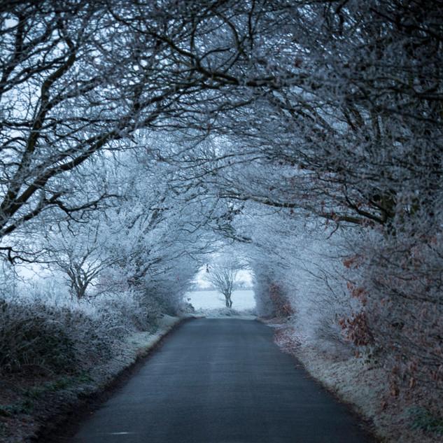 Winter Tunnel, West Yorkshire, UK
