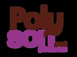 logo_Polyson_couleur_moyen.png