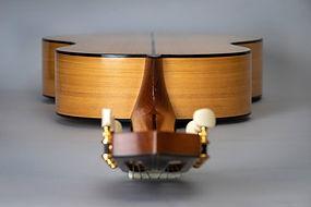 luthier vincent jannot.jpg