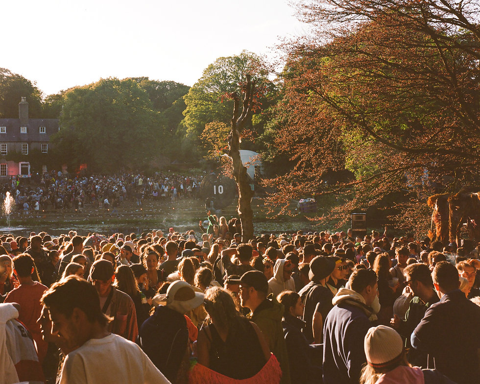 At Gottwood Festival. Events, Festival Anglesey, Music Photography. Photo taken by Rob Jones @hirobjones