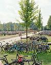 Bycycles At Dekmantel Festival. Events, Festival Amsterdam, Music Photography. Photo taken by Rob Jones @hirobjones