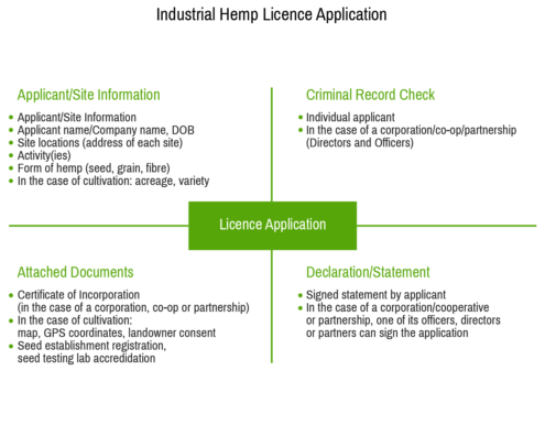 Hemp Cultivation License  and Initial Steps for Starting a Hemp Business in