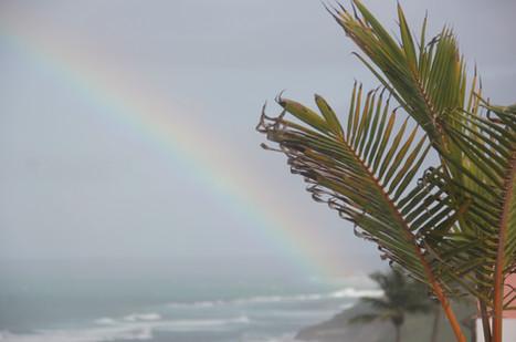 chase th rainbow