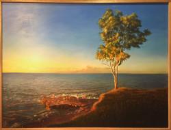 Nightcliff Sunset (SOLD)